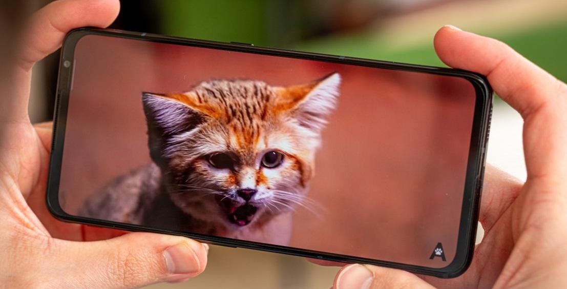 المراجعة الكاملة لمواصفات هاتف Red Magic 6