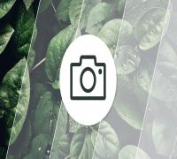 المقارنة الكاملة بين كاميرات الهاتفين الأفضل حاليًا في عالم التصوير Huawei Mate 40 Pro وXiaomi Mi 10 Ultra