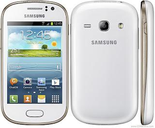 صور samsung Galaxy Fame S6810